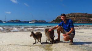 beachkangaroo